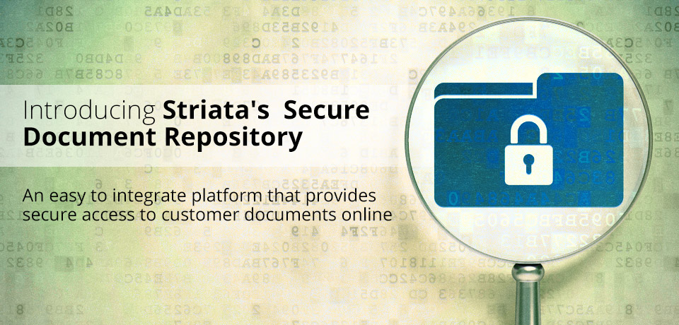 Introducing Striata Secure Document Repository