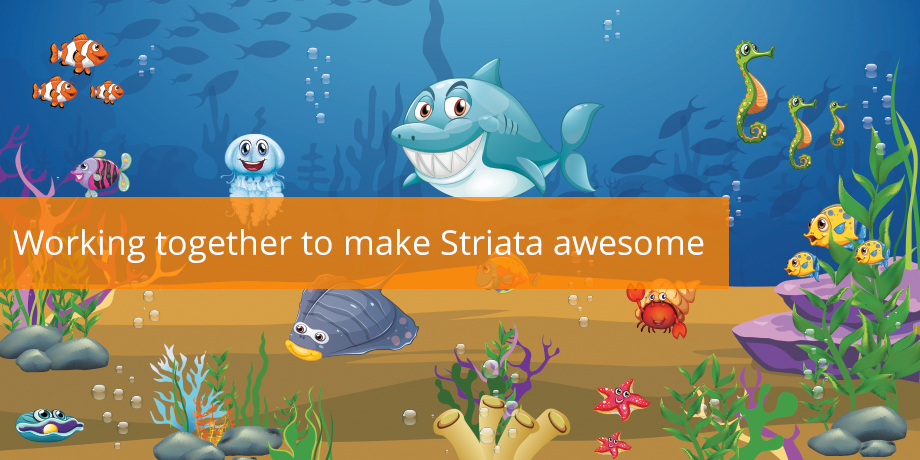 The 10 Values that make Striata Awesome